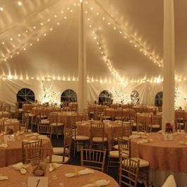 Mini Globe String Lighting - 30 x 150 Tent